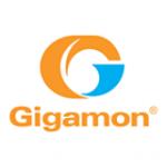 riverbed-gigamon